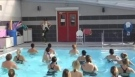 Timber Aqua Zumba by Marlne